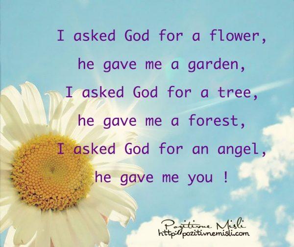 I asked God for a flower