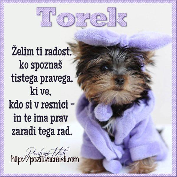 TOREK-  Želim ti radost