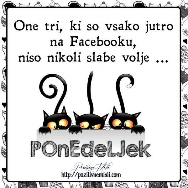 PONEDELJEK - One tri