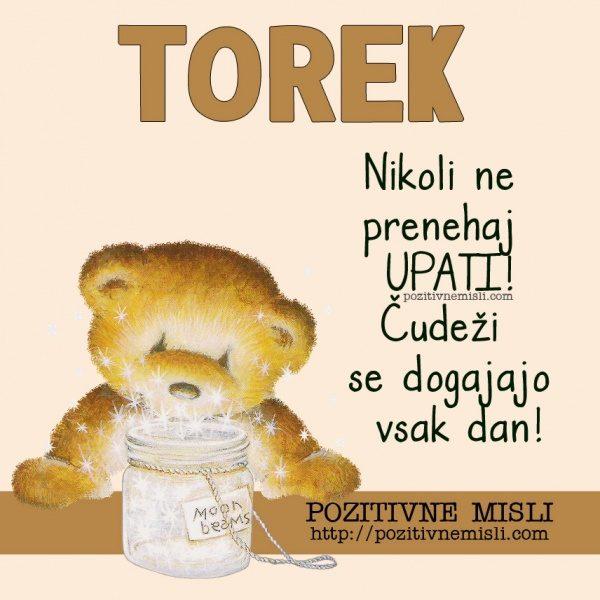 TOREK - Nikoli ne prenehaj upati! Čudeži se dogajajo vsak dan!