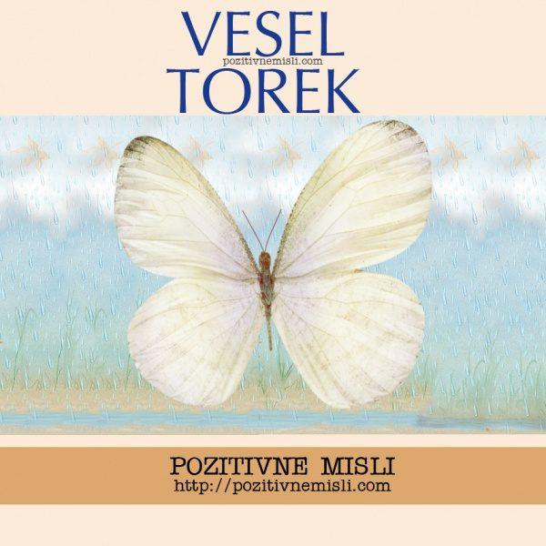 VESEL TOREK