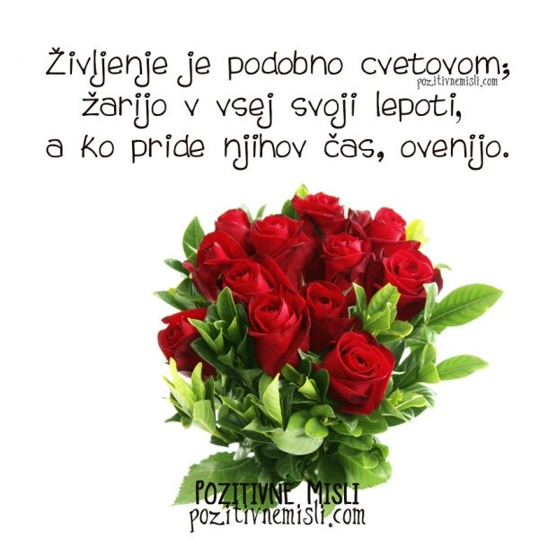 Življenje je podobno cvetovom; žarijo v vsej svoji lepoti, a ko pride njihov čas