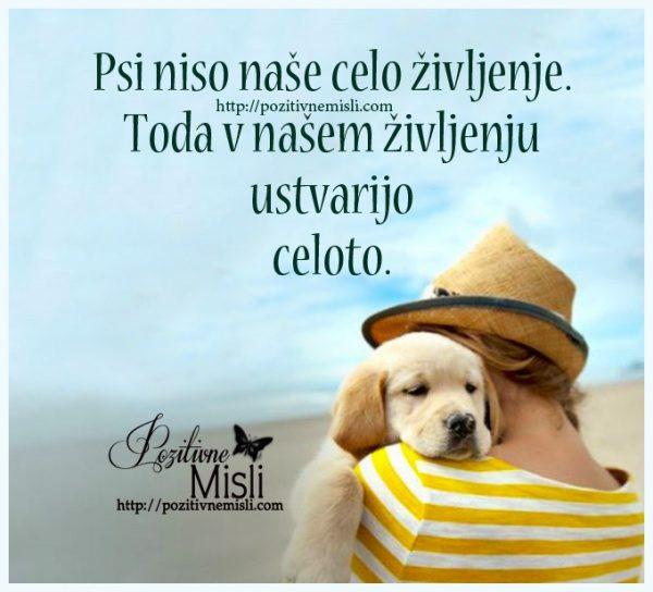 Psi niso naše celo življenje - misli o psih 🐶💕🐶