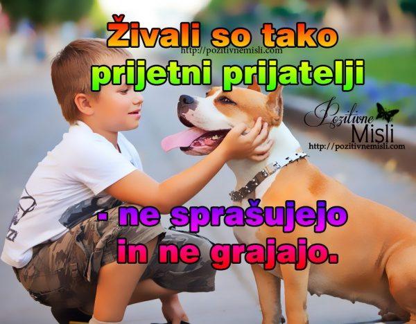 Živali so tako prijetni prijatelji; ne sprašujejo in ne grajajo.