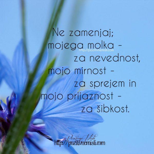 Ne zamenjaj mojega molka za nevednost, mojo mirnost za sprejem in mojo prijaznos