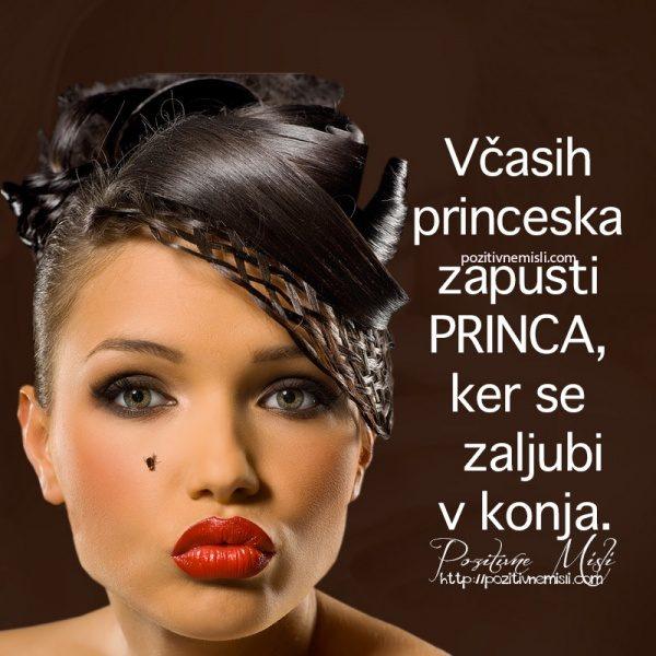 Včasih princeska zapusti princa, ker se zaljubi v konja.