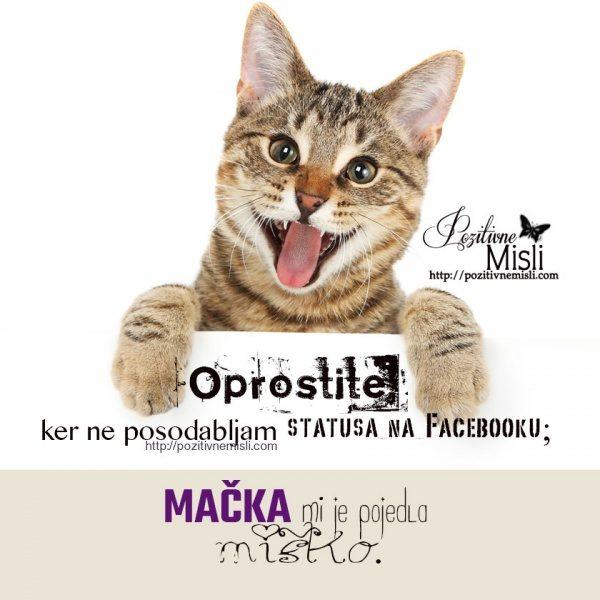 Oprostite, ker ne posodabljam statusa na Facebooku, namreč, mačka mi je pojedla