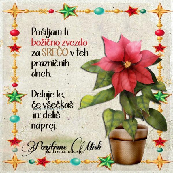 Pošiljam ti  božično zvezdo  za srečo v teh  prazničnih dneh.