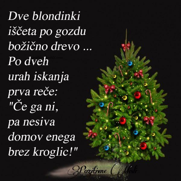 Dve plavolaski iščeta po gozdu božično drevo Po dveh urah iskanja ena reče