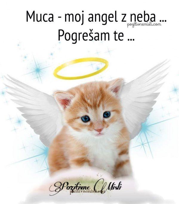 Muca - moj angel z neba ... Pogrešam te