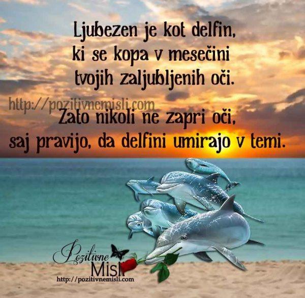 Ljubezen je kot delfin