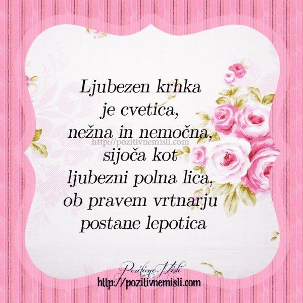Ljubezen krhka je cvetica, nežna in nemočna, sijoča kot ljubezni polna lica, ob