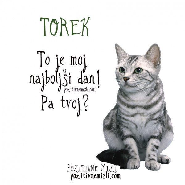 TOREK - To je moj najboljši dan! Pa tvoj?