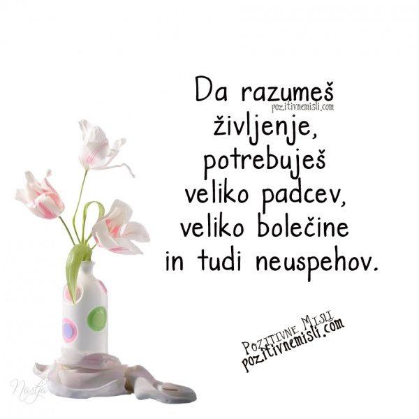 Da razumeš življenje, potrebuješ veliko padcev, veliko bolečine in tudi neuspeho