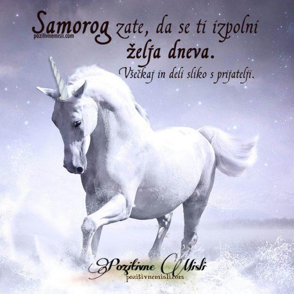 Za srečo - Samorog -  da se ti izpolni želja 🦄