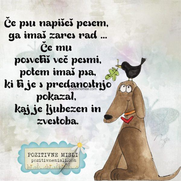 Če psu napišeš pesem,  ga imaš zares rad ... Če mu posvetiš več pesmi, p