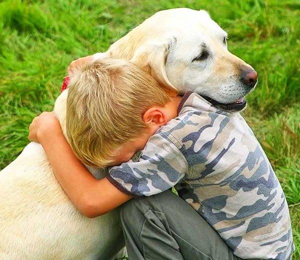 Pes zna tolažiti, ko so ljudje žalostni