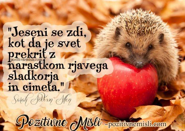 MISLI O JESENI - Jeseni se zdi ...