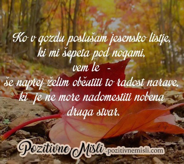MISLI O JESENI - Ko v gozdu poslušam jesensko listje ...