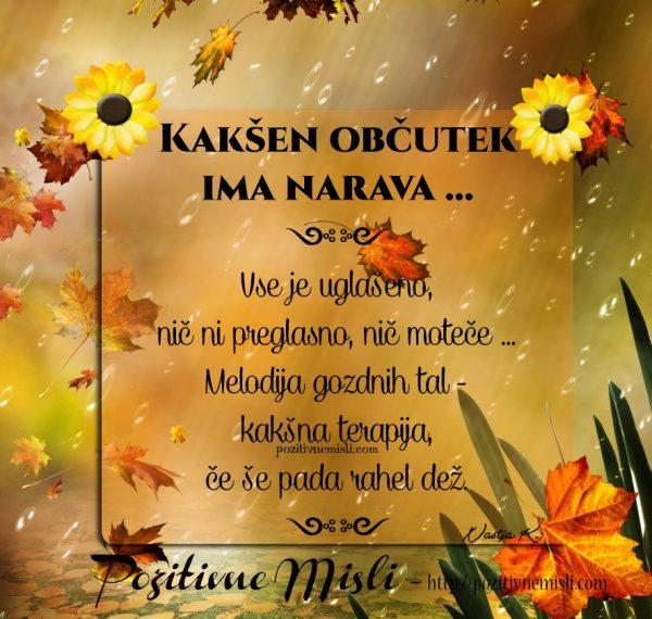 Kakšen občutek  ima narava ...  ༺༻  Jesen -melodija narave ༺༻