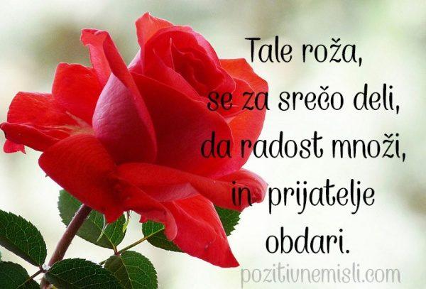Tale roža,  se za srečo deli - SREČO JE TREBA DELITI 🦋🍃🌹🍃🌹🍃🌹🍃🦋