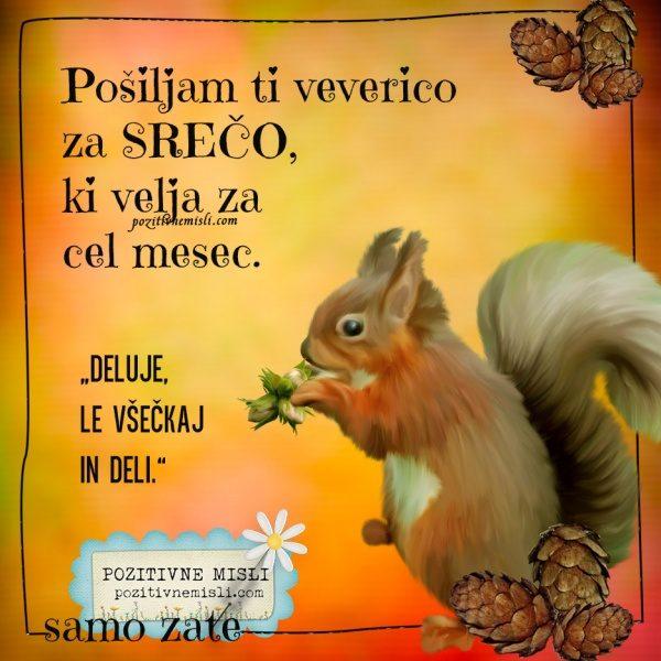 Pošiljam ti veverico za srečo  ...