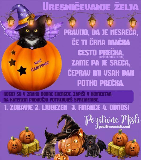 Če ti črna mačka cesto prečka - Verzi za noč čarovnic