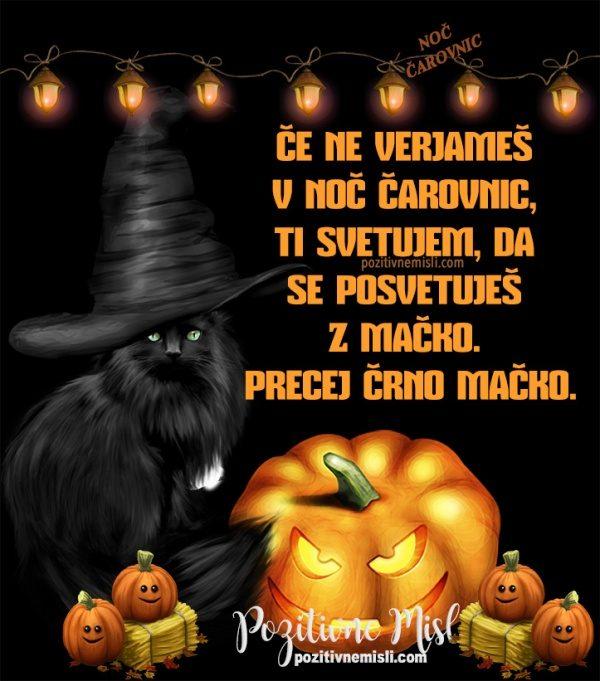 Če ne verjameš  v noč čarovnic,  ti svetujem, da  se posvetuješ  z mačko