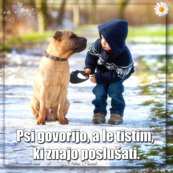 Misli o psih - PES TERAPEVT  - Psi govorijo