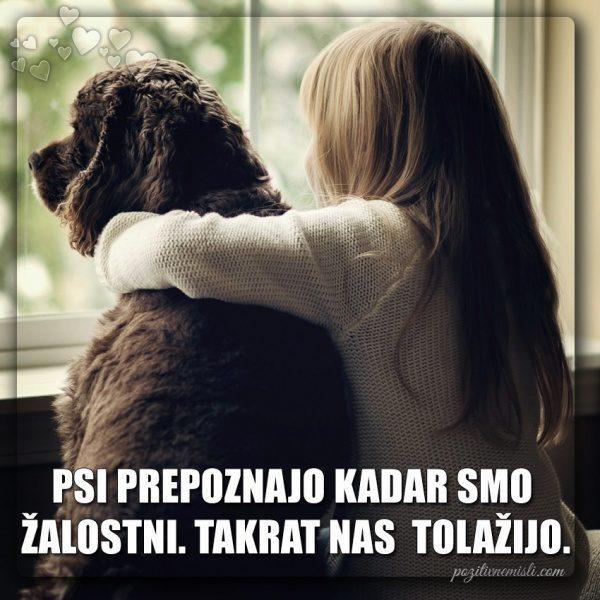 PES TERAPEVT - Psi prepoznajo ...
