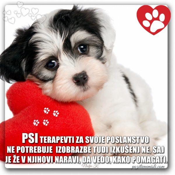 PES TERAPEVT - Psi terapevti za svoje poslanstvo