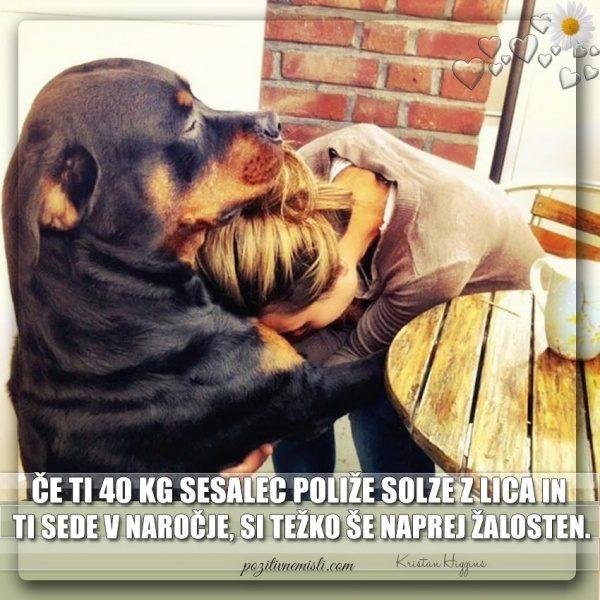 PES TERAPEVT - Če ti 40 kg  sesalec ...
