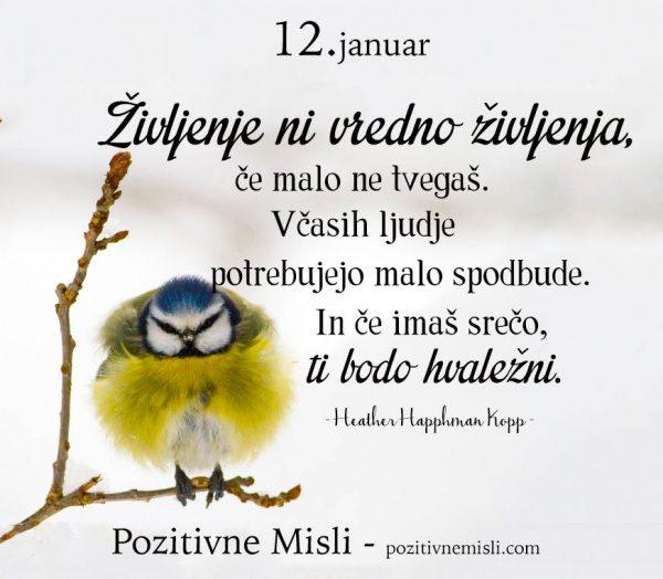 12. januar - 365 modrih misli - Življenje ni vredno življenja