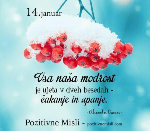 14. januar -365 modrih misli -  Vsa naša modrost je