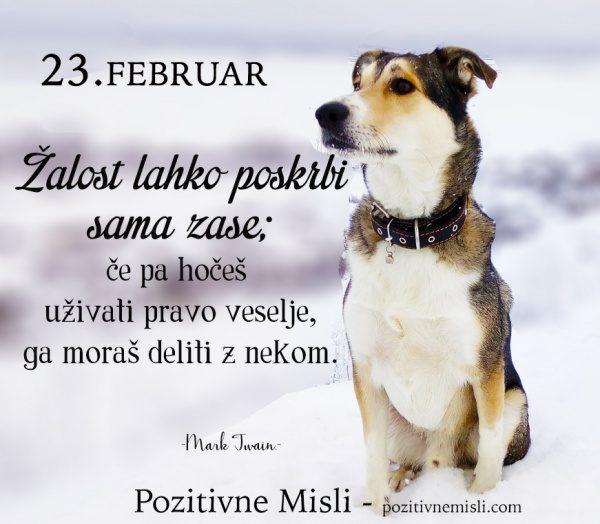 23. februar - 365 modrih misli -  Žalost lahko poskrbi