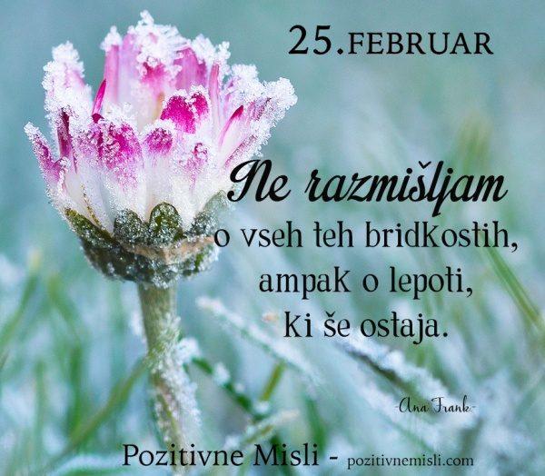25. FEBRUAR - Ne razmišljam ...