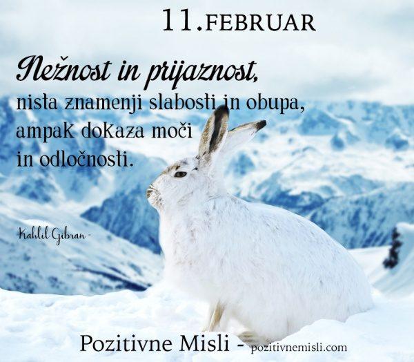11. FEBRUAR - 365 modrih misli -Nežnost in prijaznost