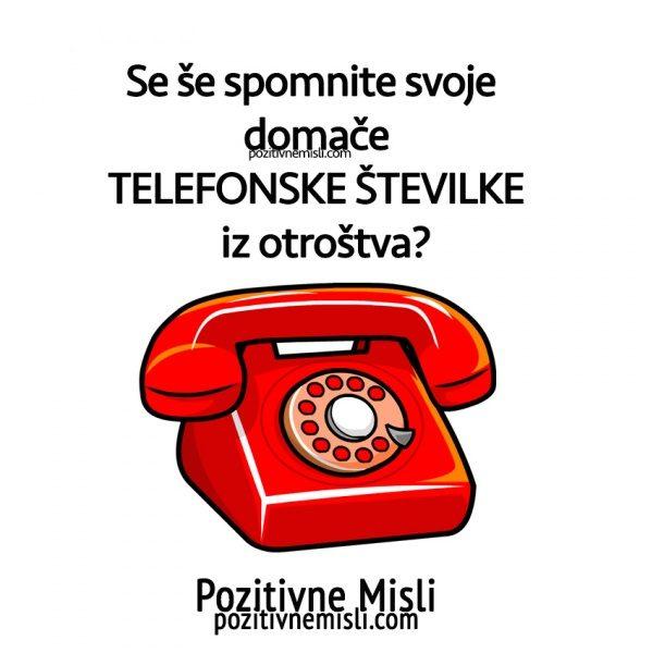 Telefonska številka