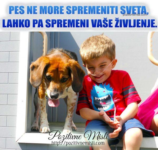 Pes ne more spremeniti sveta, lahko pa spremeni vaše življenje.