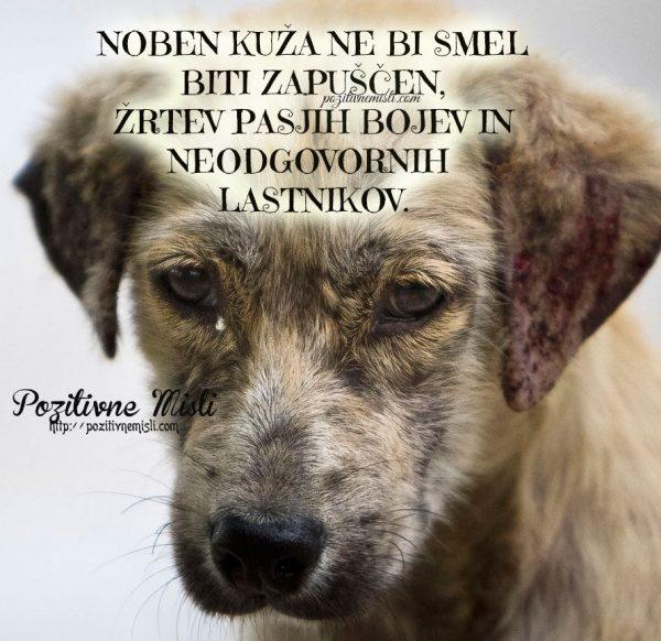 Noben kuža ne bi smel biti zapuščen žrtev pasjih bojev in neodgovornih lastn