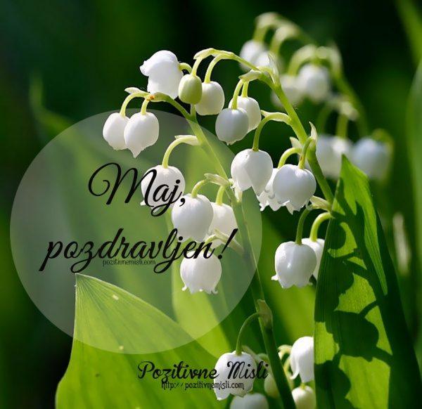 Pozdravljen, MAJ - lepemisli za mesec maj
