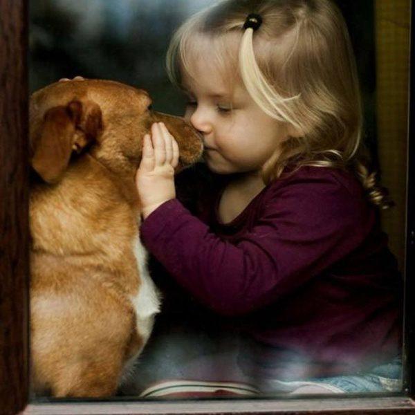 Otroci in ljubezen do psov