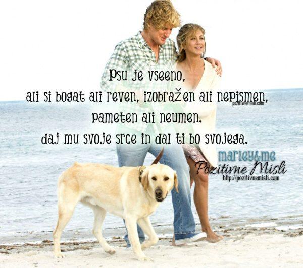 Psu je vseeno, ali si bogat ali reven, izobražen ali nepismen,  pameten ali ne