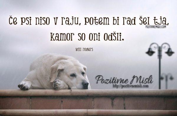 Če psi niso v raju, potem bi rad šel tja, kamor so oni odšli. Will Rogers