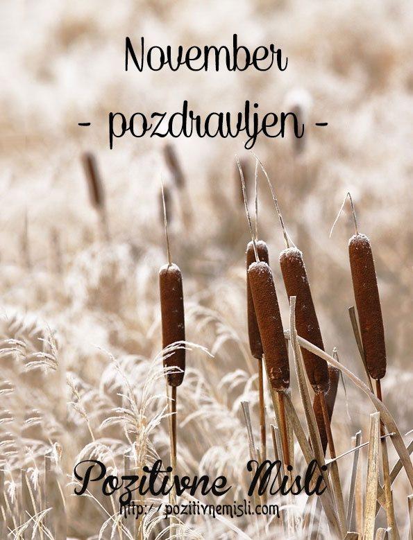 November - naj bo to lep mesec
