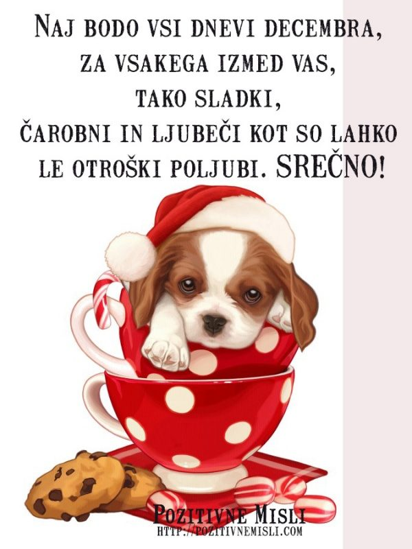 Naj bodo vsi dnevi decembra, za vsakega izmed vas, tako sladki, čarobni in ...