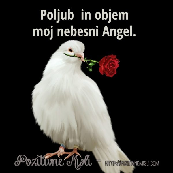 Valentinovo nebesni angel - misli v spomin