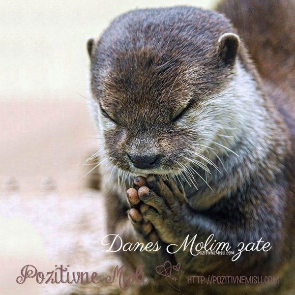 Molitev zate
