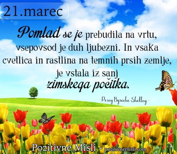 21. MAREC - Pomlad se je prebudila na vrtu