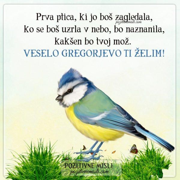 GREGORJEVO - Prva ptica ...